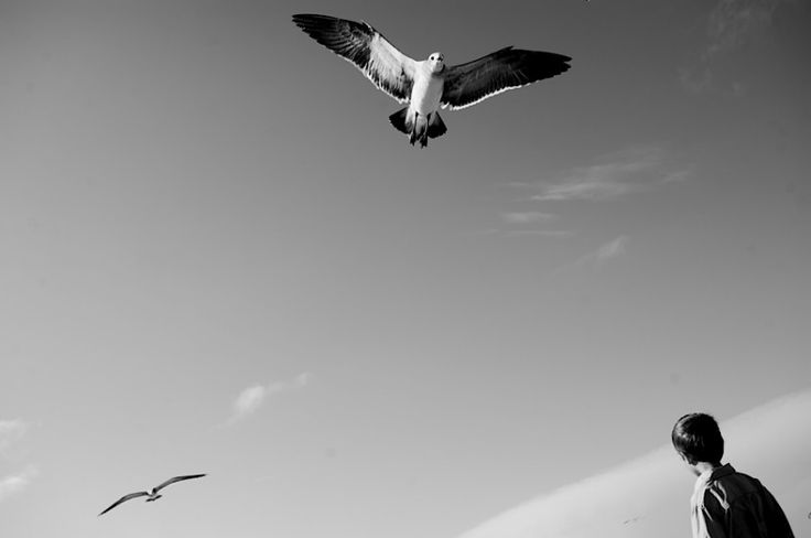 outer-banks-family-photography-2010038