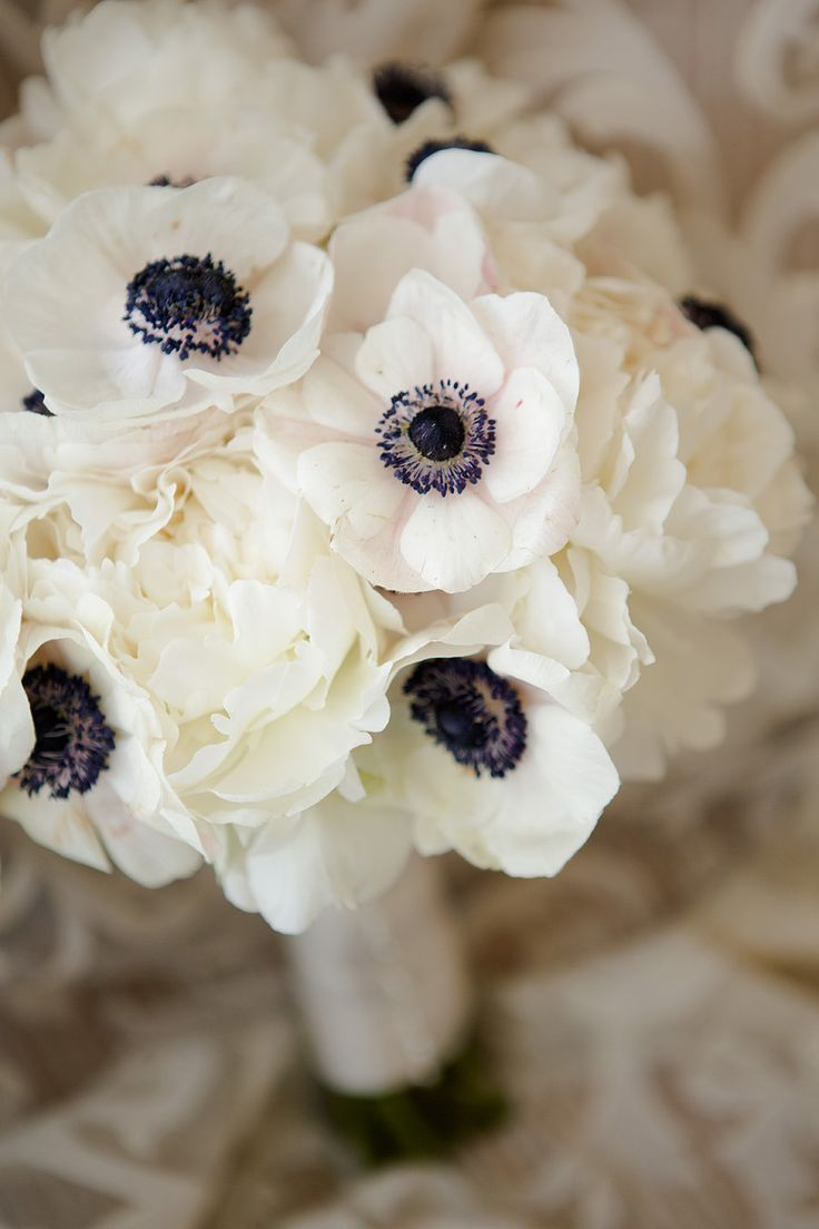 Floral Design: Poppys Petalworks | Photography: Wayne and Angela