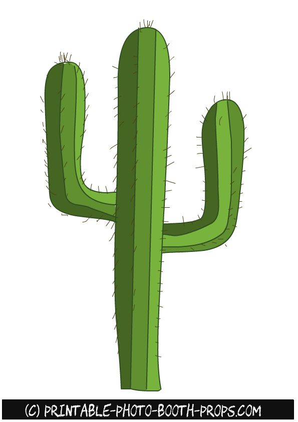 cactus.png (595×841)