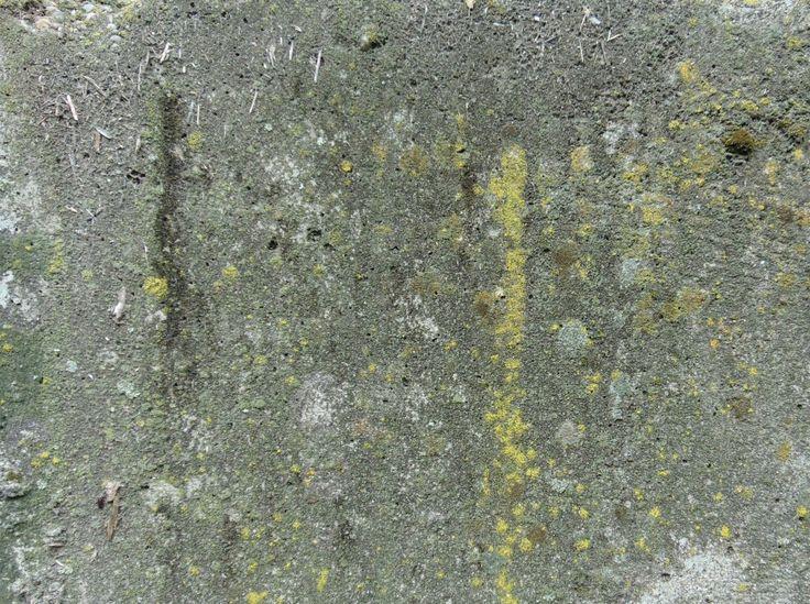 concrete-texture0005