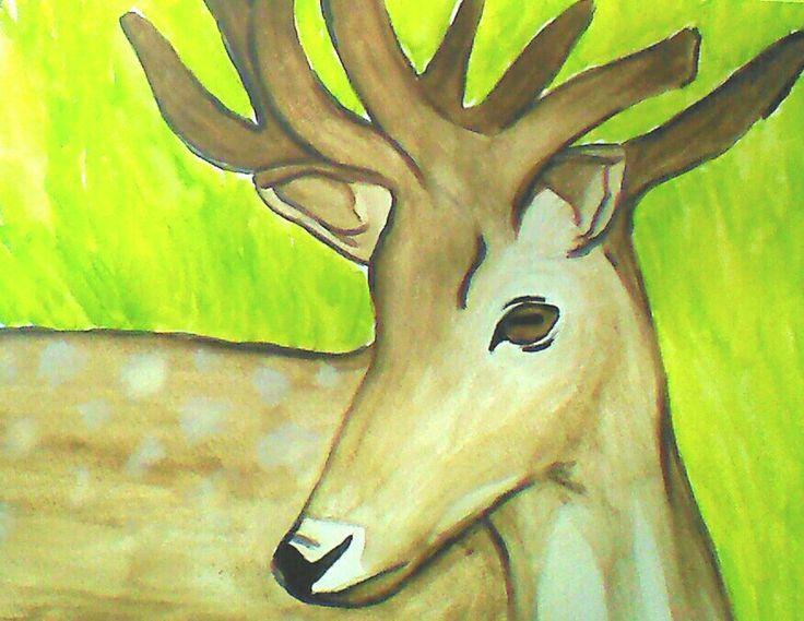 Deer- watercolour