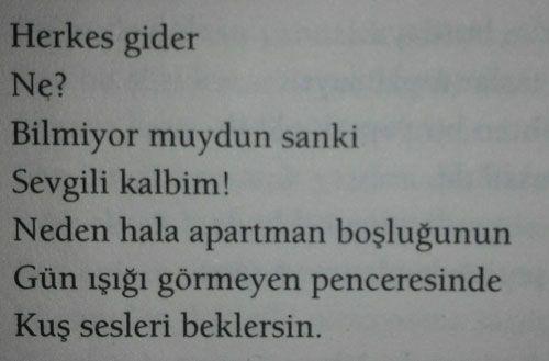 Ali Lidar - Alengirli Şiirler - Herkes Gider