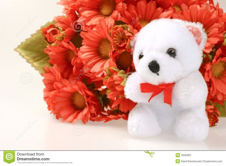 beautiful teddy bear with flowers #89129, Beautiful