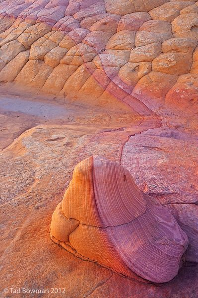 Sandstone Magic in the Arizona Desert ~ by Tad Bowman