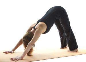 The downward facing dog yoga pose