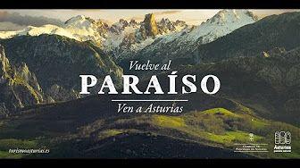 Presentación técnica Campaña #VuelvealParaíso