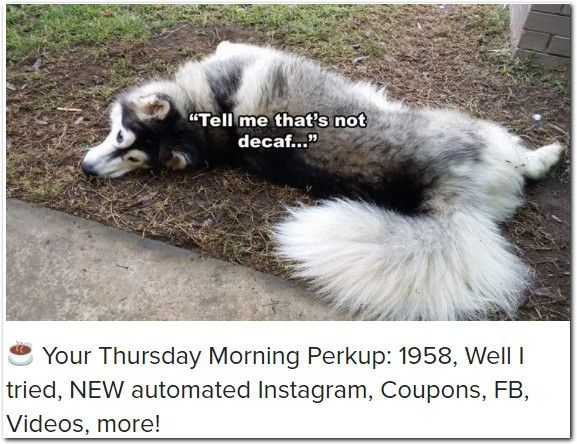 ☕ Your Thursday Morning Perkup: 1958, Well I tried, NEW automated Instagram, Coupons, FB, Videos, more!