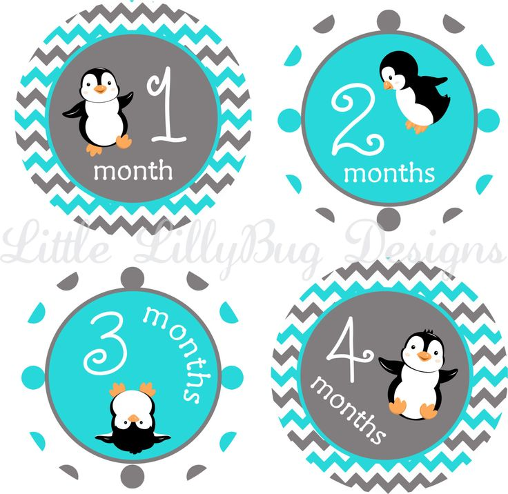 Milestone Stickers Baby Monthly Stickers Baby Boy Penguins Baby Shower Gift  One Piece Baby Stickers