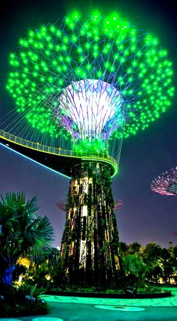 Tree of Lights , Singapore