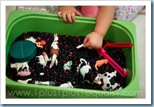 montessori minute--sensory play.  really excellent info on ideas for sensory play and skill development