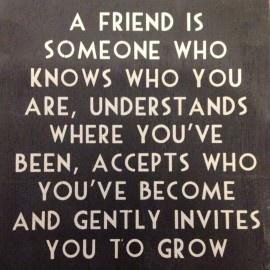 A friend is....   Spreuken   Stoer en Sfeer