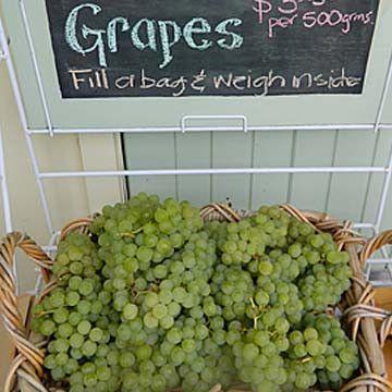 Grape Niagara