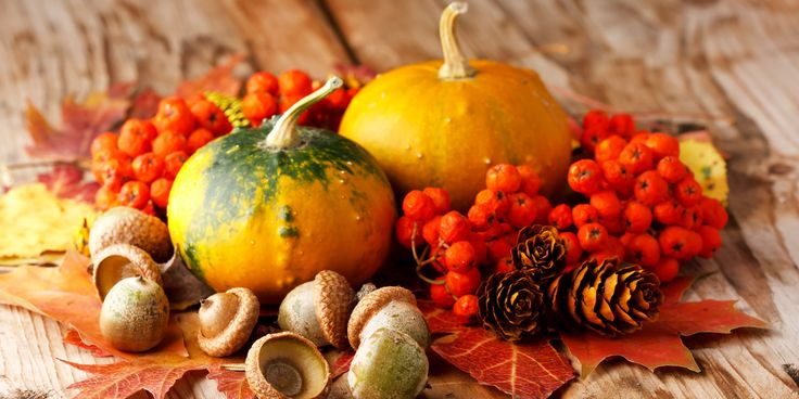 The Best Fall Food, A HuffPost Deathmatch (VOTE)