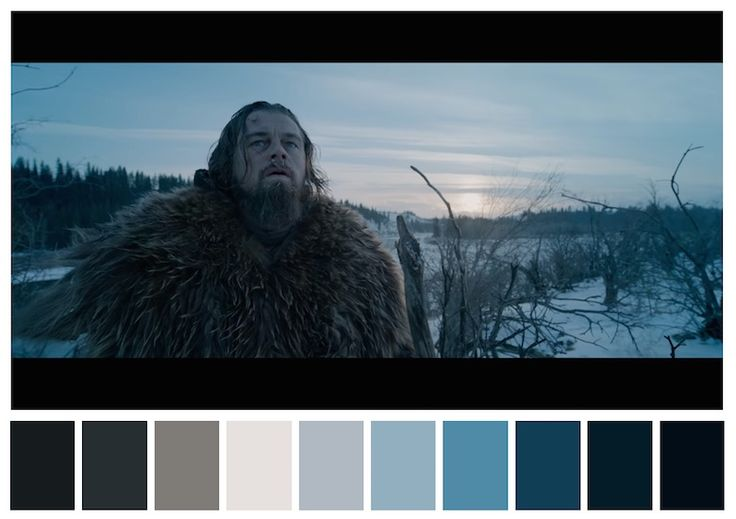Color Palettes from famous movies show how colors set the mood of a film @CinemaPalettes shares these color palettes - for example The Revenant