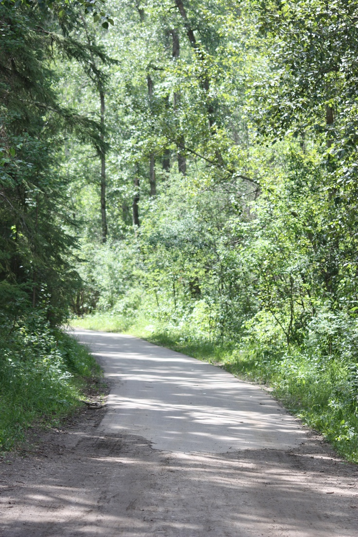 falling leaves apple pie walking in the woods sleeping late on saturdays i luv nature!!!!