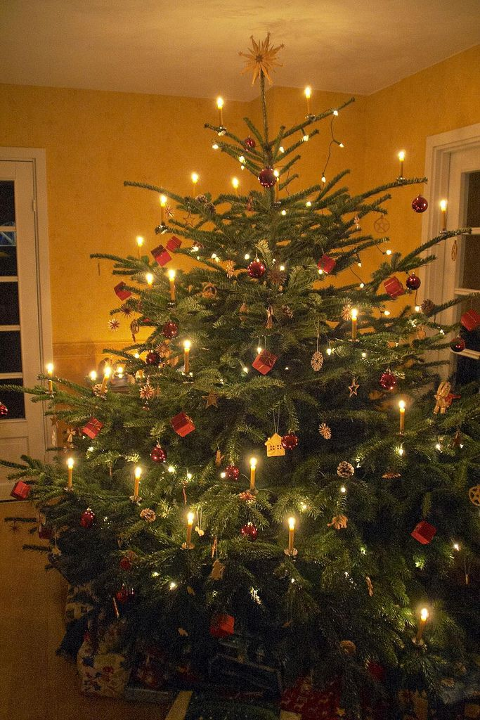Nice example of a German Christmas tree with real candles. Come on, it's not