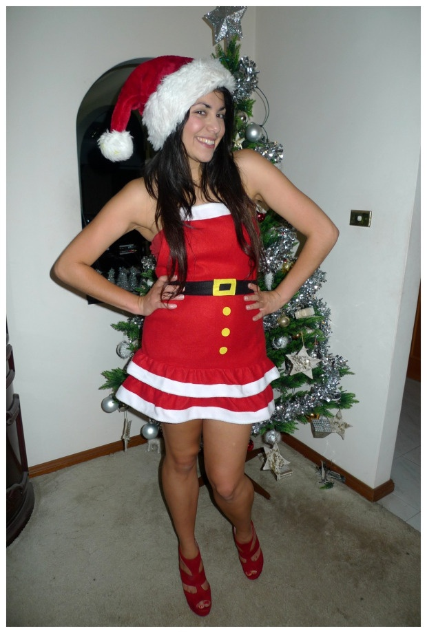 Day 178 Sexy Mrs Claus Christmas Costume