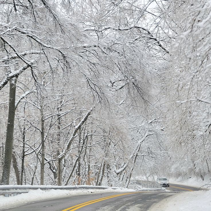 Weathering 2014's First #Winter #Storm: Prepare Your Home and Understand What Your #Homeowners #Insurance Covers | #USAA News Center. #Hercules #safety #home #family