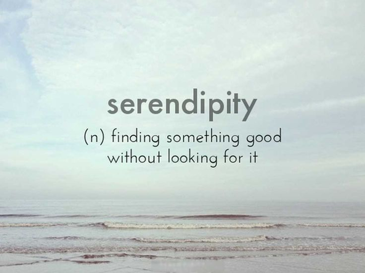 serendipity | The Nicest Pictures: serendipity