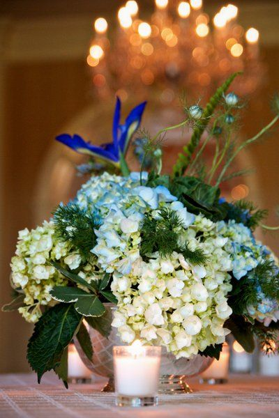 Blue White Centerpiece Centerpieces Wedding Flowers Photos & Pictures - WeddingWire.com