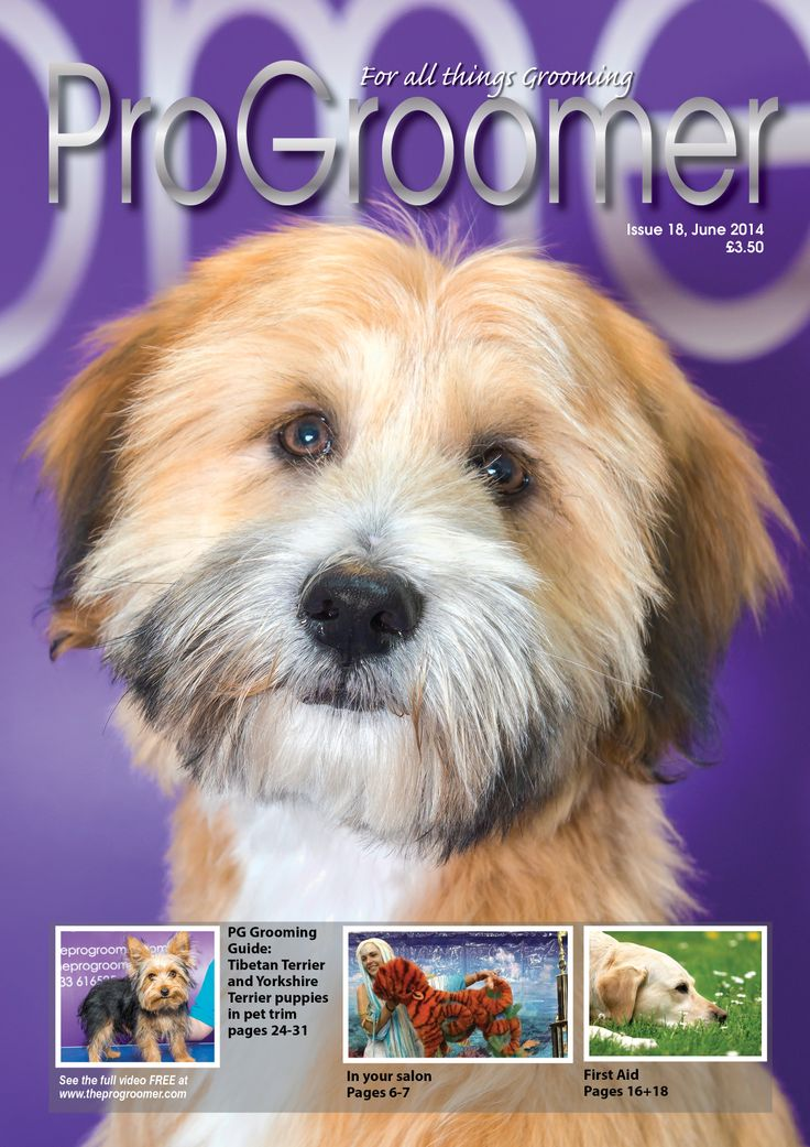 ProGroomer issue 18 front cover grooming dogs www