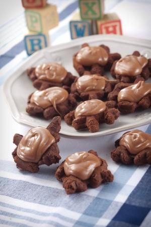 """Turtle Cookies from """"Lion House Cookies & Sweets."""""""