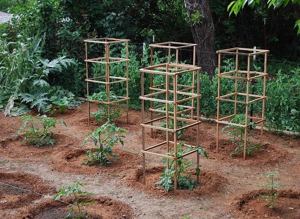 how to build wooden tomato cages