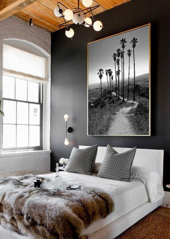 Hiking in Paradise – Los Angeles – California – Palm Trees – Landscape Photography – Cityscape – Bla