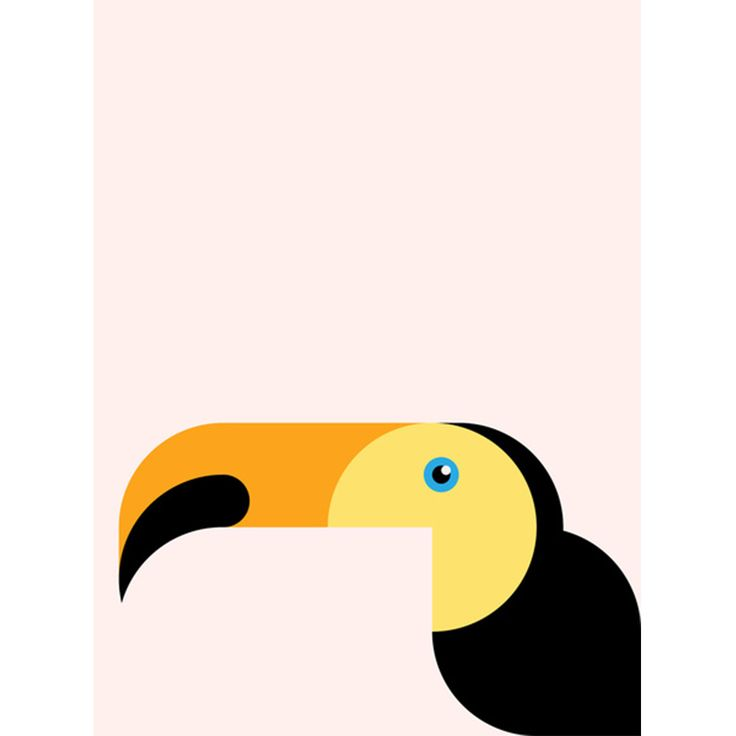 Retro Toucan Print / Wild Child
