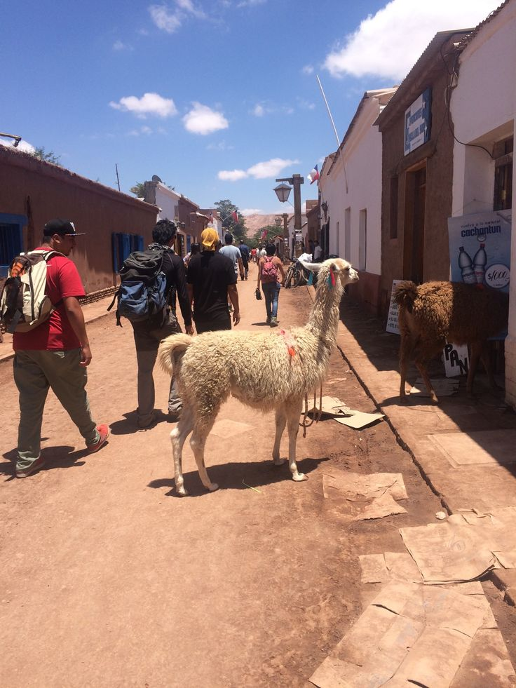 San Pedro de Atacama en Antofagasta  Perfect town for tourism