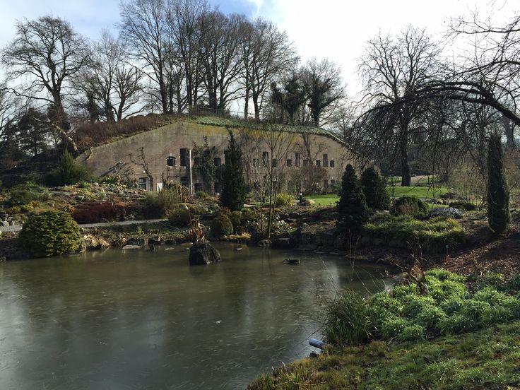Botanische tuin, Utrecht.