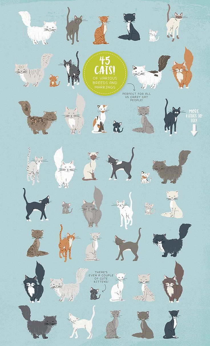 Cute vector animals illustration Vector | Free Vector Download In ...