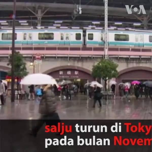 Untuk pertama kalinya dalam 50 tahun, salju turun di Tokyo pada bulan November. Ahli meteorologi memperkirakan saju turun hingga 2 cm. Terakhir kali salju turun di Tokyo pada November adalah tahun 1962.