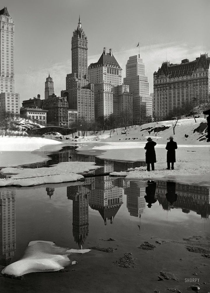 "A magnificent shot that's truly timeless. February 12, 1933. ""New York City views. Plaza buildings from Central Park."" The Savoy Plaza and Plaza hotels. Photo by Samuel H. Gottscho."