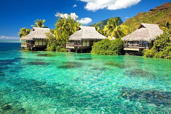 Dominikanische Republik Strand Bungalow im Dominikanische Republik Reiseführer http://www.abenteurer.net/1513-dominikanische-republik-reisefuehrer/