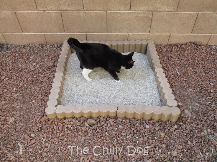 """Great idea if you have an enclosed outdoor cat space....How to build a simple, DIY, outdoor cat litter box that I like to call """"The Zen Garden"""""""