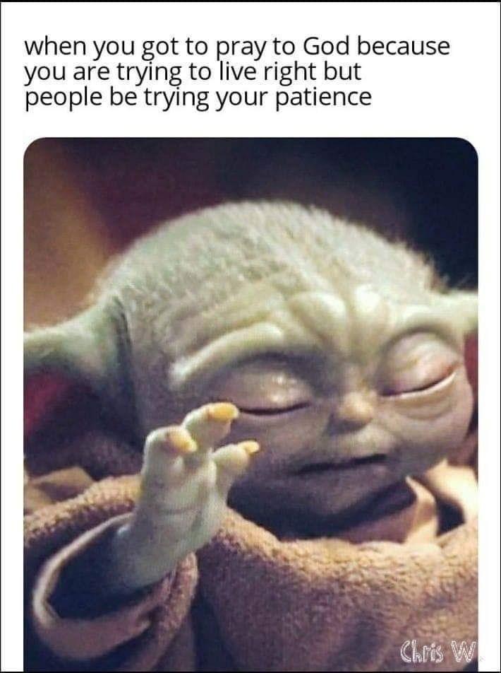 Pin by Amanda Vest on Baby Yoda in 2020   Yoda meme, Funny ...