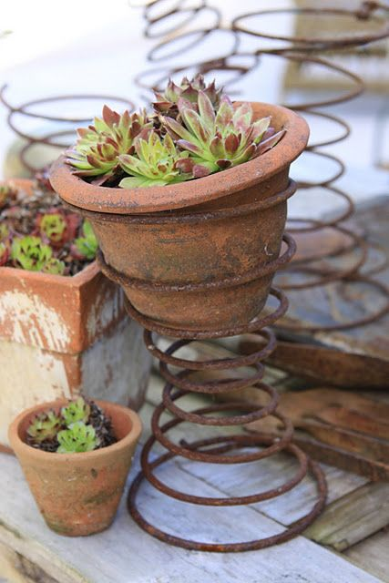 French Flower Pots & Rusty SpringsGardens Ideas, Bed Springs, Plants Stands, Old Beds Spring, Gardens Projects, Flower Pots, Plants Holders, Clay Pots, Rusty Spring