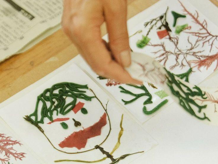 【愛媛県 上島町弓削体験交流施設「せとうち交流館」での手作り体験】「せとうち交流館」では、上島町に暮らす人々と交流しながら、海藻いぎす草を使った郷土料理「いぎす豆腐作り体験」、海藻を使ってハガキや栞などを作る「海藻押し葉体験」など、島の海・山野の自然素材を生かした様々な手作り体験ができます。島旅の思い出づくりにいかがですか。【問い合わせ先】上島町弓削体験交流施設「せとうち交流館」0897-77-2252 #Ehime_Japan #Setouchi http://setouchi-k.town.kamijima.ehime.jp/