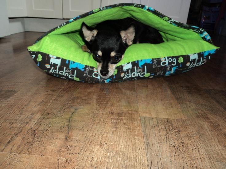 Chupa In A Diy Pocket Dog Bed Diy Fur Kids Pinterest