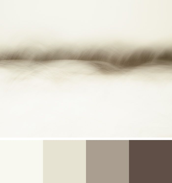 Benjamin Moore Colors 2016 - Colour Palette – Simply White, Ballet White, Weimaraner, and French Press - Shown with abstract art photograph Furry Field by Jennifer Squires
