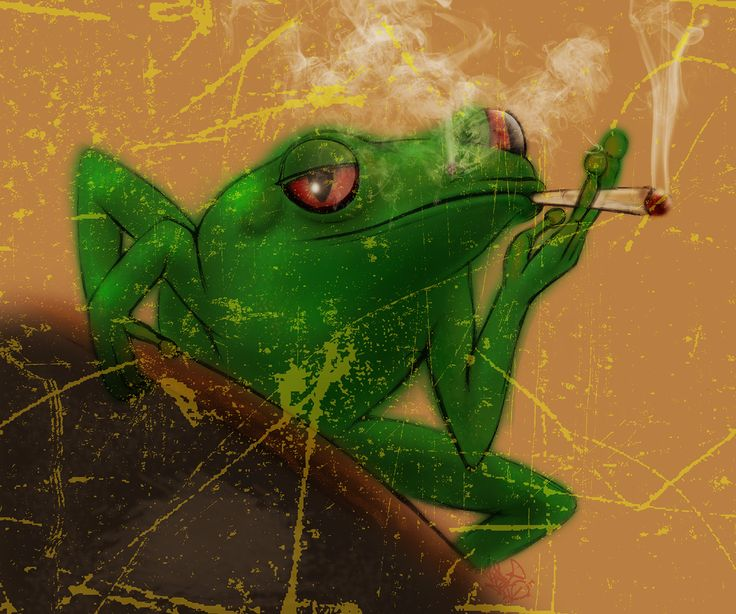 Smoking Frog  #Alwayscreative87 #Animal #Art #Beltonaru #Darko #Design #Frog #Green #Haze #Illustration #Sketch #Smoke #...