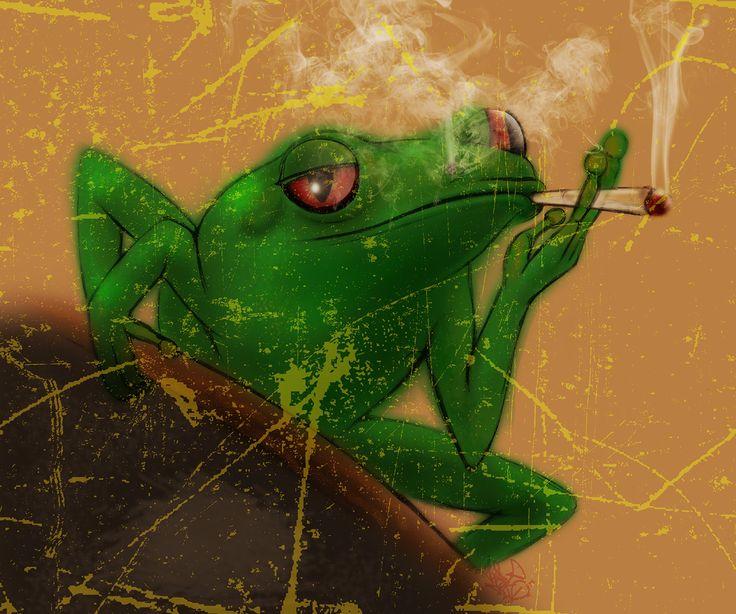 Smoking Frog  #Alwayscreative87 #Animal #Art #Beltonaru #Darko #Design #Frog #Green #Haze #Illustration #Sketch #Smoke #...
