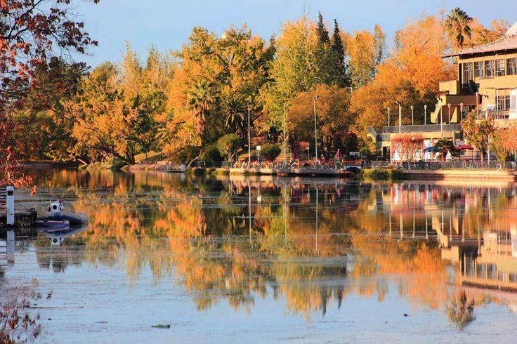 Lago del parque, Parque Gral. San Martín, Mendoza, Argentina.