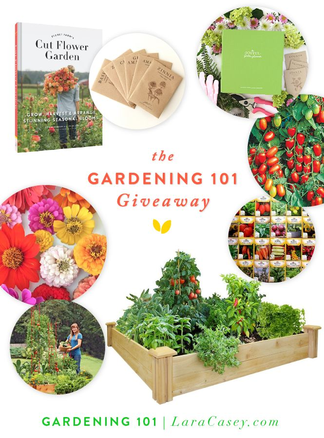All you need for gardening in one giveaway love this post for Gardening 101 lara casey