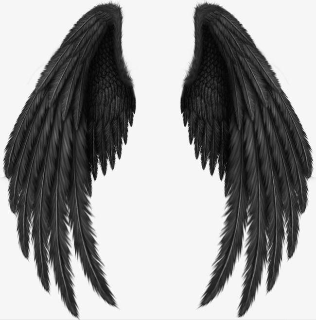 Um Par De Asas Asas Clipart Enfeites De Volta De Volta Imagem Png E Psd Para Download Gratuito Angel Wings Png Wings Drawing Wings Png