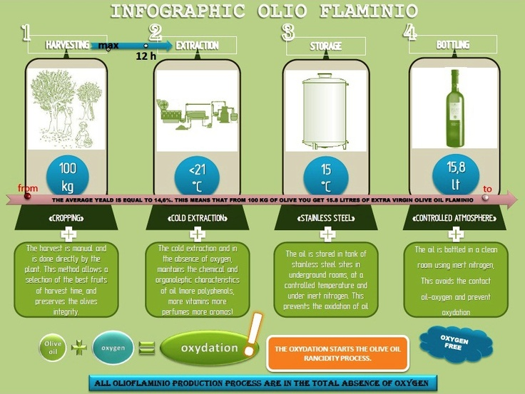 infographic of extra-virgin olive oil Flaminio