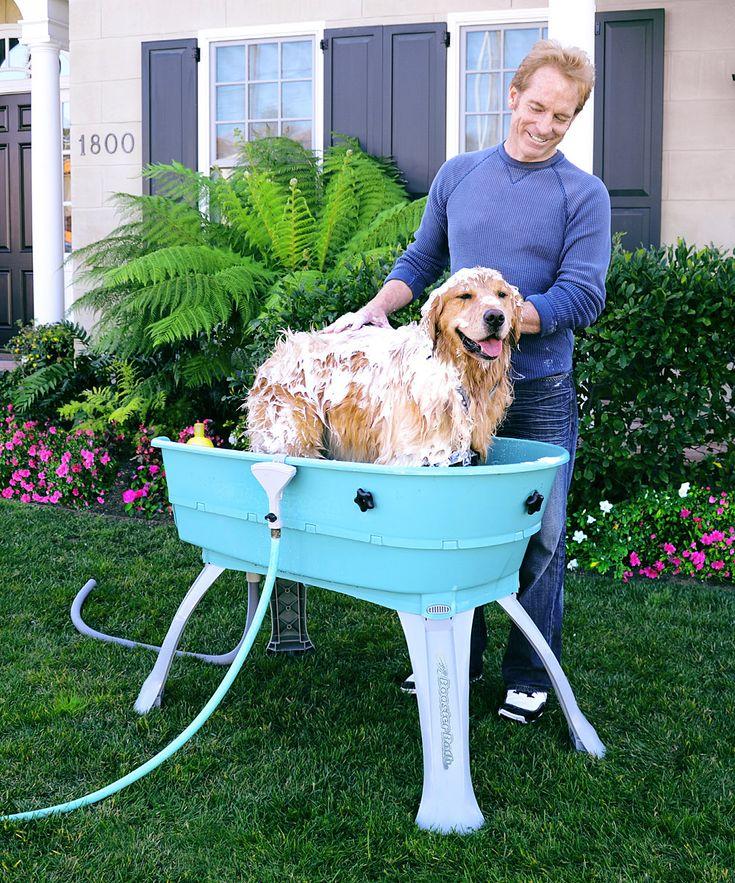 1000 Ideas About Dog Bath Tub On Pinterest Dog Bathing Dog Rooms And Dog