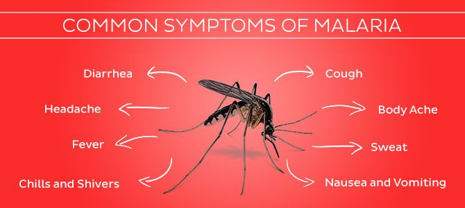 Malaria is a mosquito-borne infectious disease affecting humans and other animals caused by parasitic protozoans belonging to the Plasmodium type.Malaria causes symptoms that typically include fever, fatigue, vomiting, and headaches. In severe cases it can cause yellow skin, seizures, coma, or death.Symptoms usually begin ten to fifteen days after being bitten. If not properly treated, people may have recurrences of the disease months later.