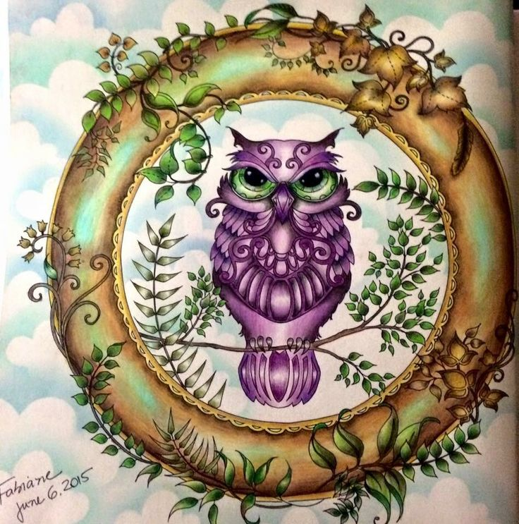 Owl Enchanted Forest Coruja Floresta Encantada Johanna Basford Coloring BookEnchanted